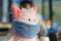 stuffed cat with mask for coronavirus protection